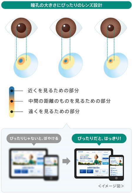 瞳孔の大きさ2